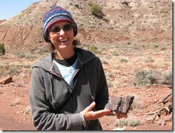 2012-04-15 Petrified Wood, Fry Canyon, UT (30)