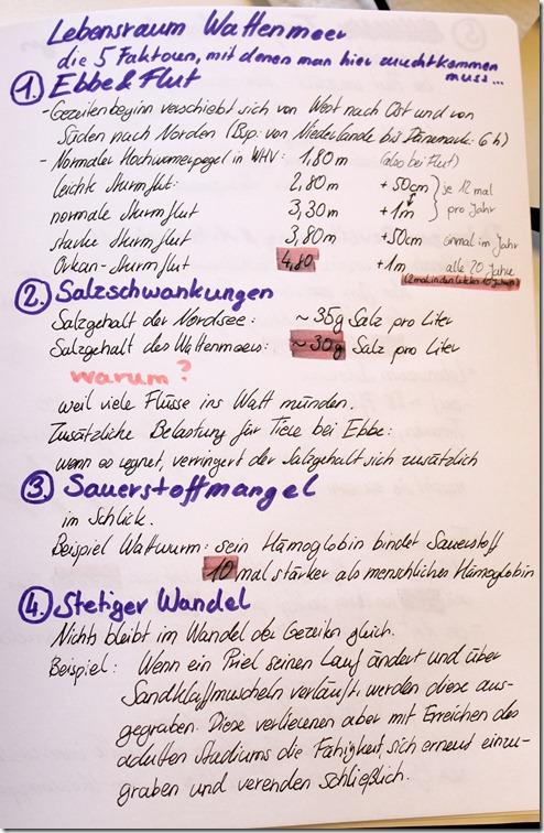 IMG_0091 Hefteintrag Watt 1