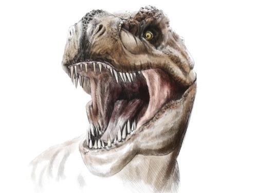 t-Rex_3D