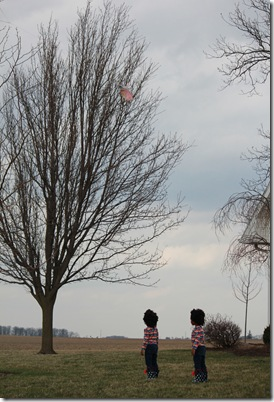 kites 144