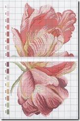 flor-ponto-cruz-grafico-10