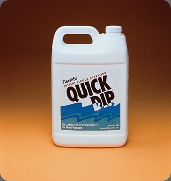 quick dip