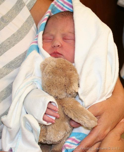 Newborn Molly