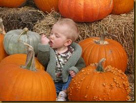 2013-10-08 Fall Visit from Grandma, Granpa and Uncle Jared 101