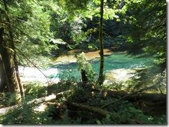 lewis river falls 54