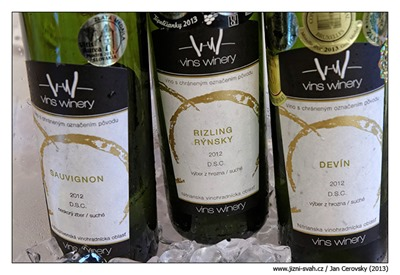 vins_winery_1