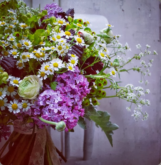 chamomile 947248_630160393680132_1139198280_n jo flowers
