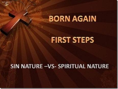 Sin Nature v. Spiritual Nature