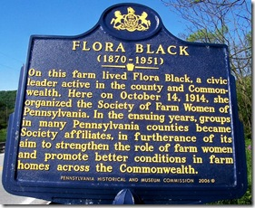 Flora Black Marker in Somerset County, PA
