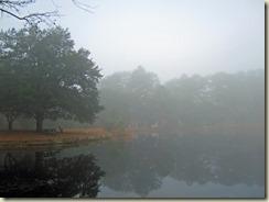 04 Sesqui Lake Fog