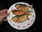 Fried piranha for dinner snacks!