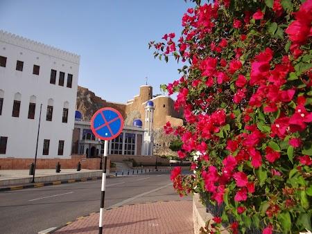 10. Ministere in Oman.JPG