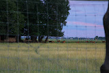 Ūkio elnynas