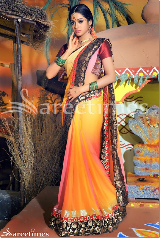 Udaya_Bhanu_Dual_Color_Saree