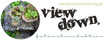 LOGO view down