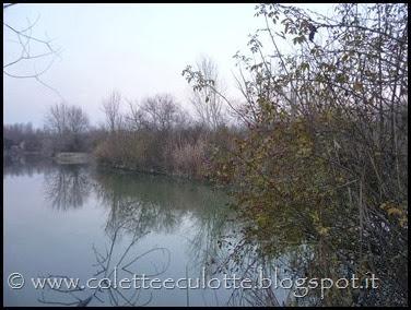 Passeggiata al Dosolo - 1 gennaio 2013 (50)
