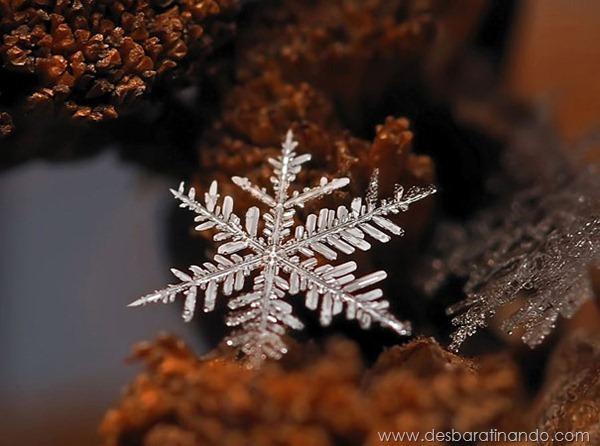 flocos-de-neve-macro-snowflakes-macro-photography-andrew-osokin-desbaratinando (8)