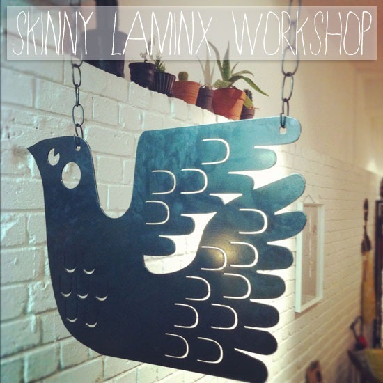 skinny-laminx-workshop