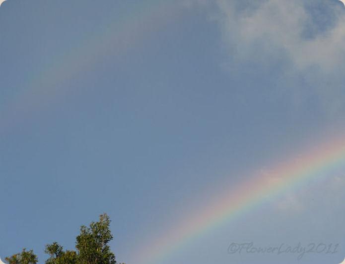 09-28-rainbow7