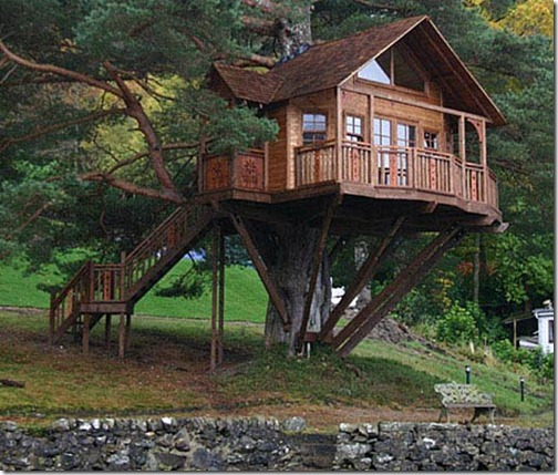 tree-house-2-470-1108