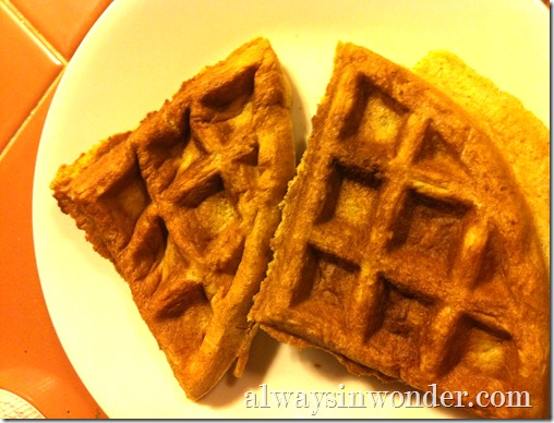 toasted_leftover_waffles_from_alwaysinwonder.com