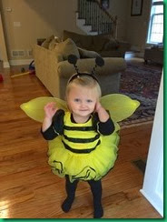 CL bee