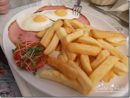 Hameggnchips