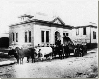 Ohio-E-920-24-Anheuser-Busch-Brewing-Association-Building-1911-IHS-Bass-26612
