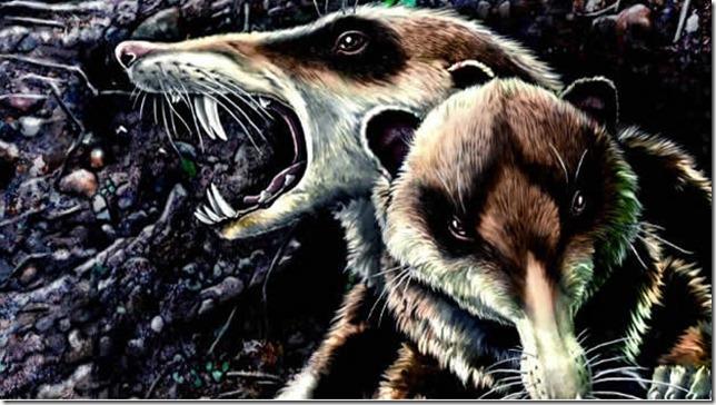 ardilla-dientes-de-sable-cronopio