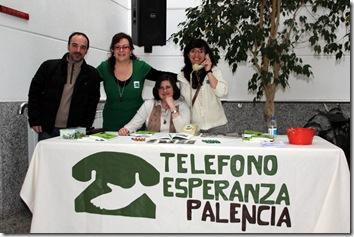 PALENCIA5
