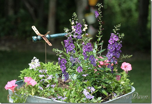 Tub_Planter_Angelonia