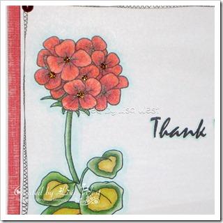 Geranium Flower (6)