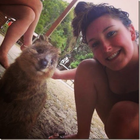 selfies-australian-quokka-013