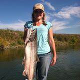 Katie salmon.jpg