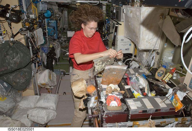 Sandra-Magnus-ISS-2