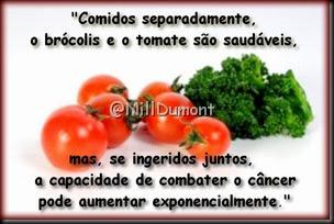brócolis e tomates 05