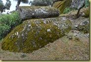 Alinda Sarcophagus in stone