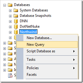 Creating a new query for the 'Northwind' database.