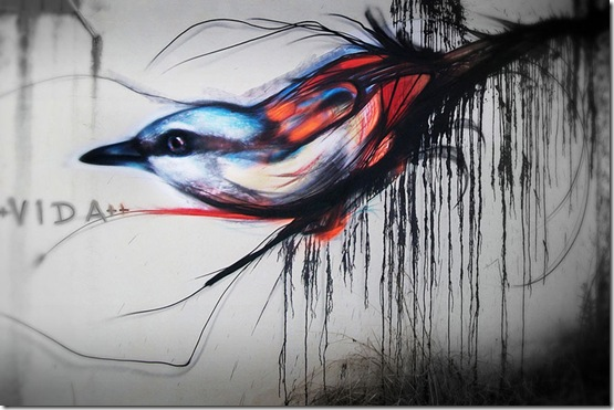 graffiti-birds-street-art-L7m-5