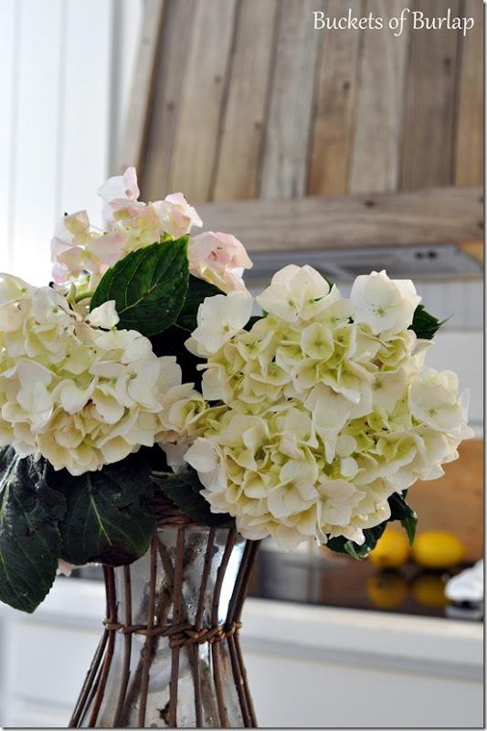 White hydrangeas 2