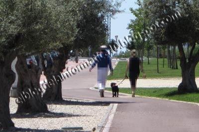 #Parla, la ciudad sin ley - carril bici parla gente con perros
