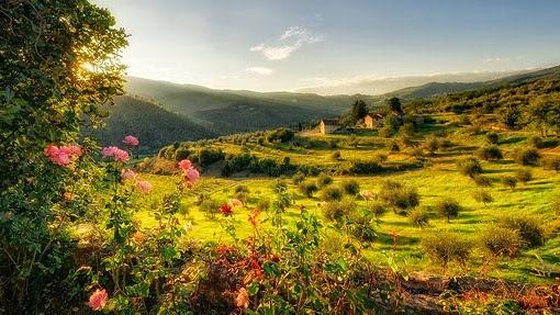 tuscany_redux