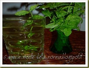 Bevanda fresca alla menta piperita (7)