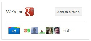 Google plus page big badge