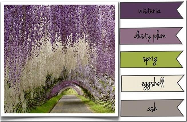 wisteria-good