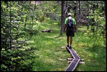 01b - Friar's Head Hike - Low Land Forrest