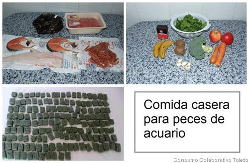 09 17 12 consumo colaborativo toledo for Comida congelada para peces