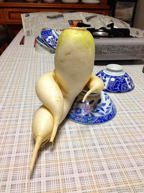 legumes e formas2