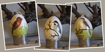 Beschilderde ganzen ei weergegeven