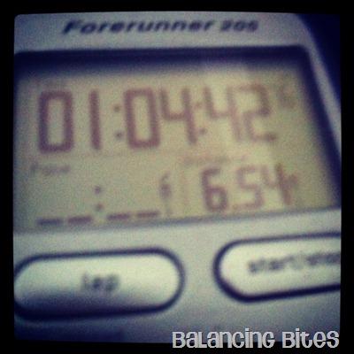 Garmin 6.5 mile run
